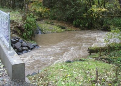 Delezenne Creek Fish Passage Restoration