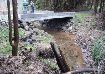 Tributary to Polson Creek 8