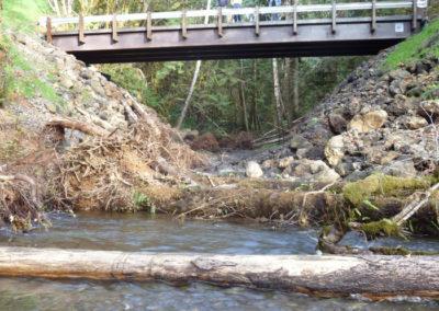Wishkah River Tributary